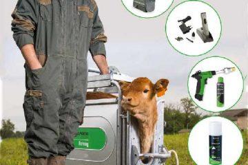 écornage bovins caprins