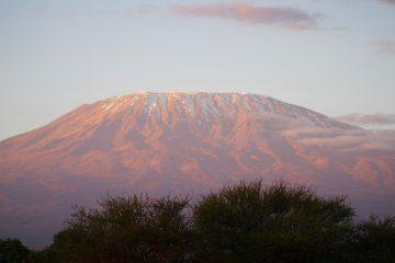 Partir à l'exploration des parcs nationaux lors d'un séjour au Kenya